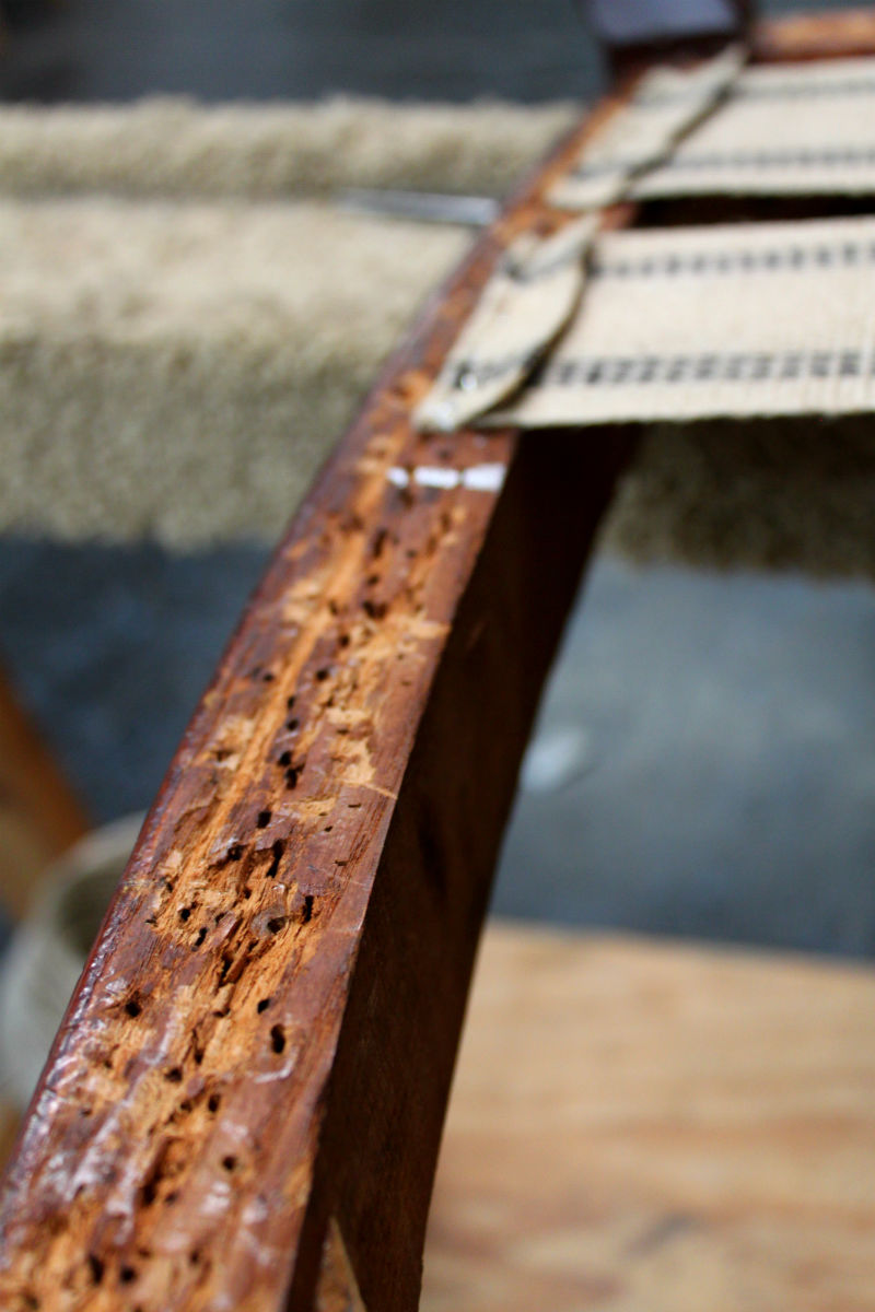 hole-y wood long staples